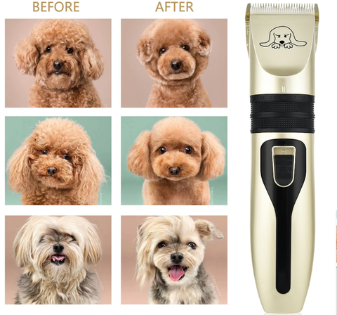 Before and After dog grooming comparison