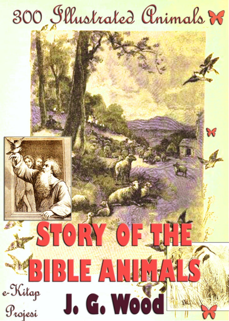 Story of the Bible Animals: 300 Illustrated Animals