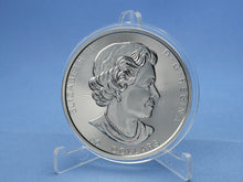 Laden Sie das Bild in den Galerie-Viewer, Kanada 50 Dollars 2019 , Maple Leaf, 10 oz 999 Silber *st*