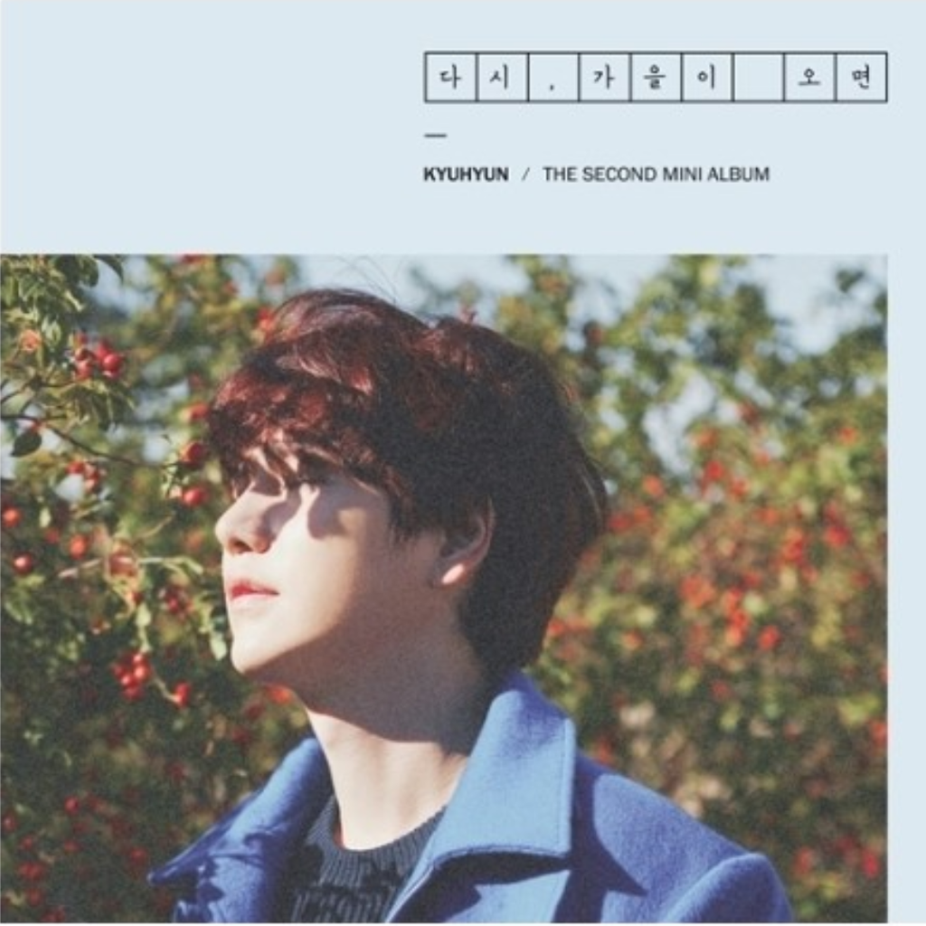 Kyuhyun Official 2nd Mini Album - Fall, Once Again CD