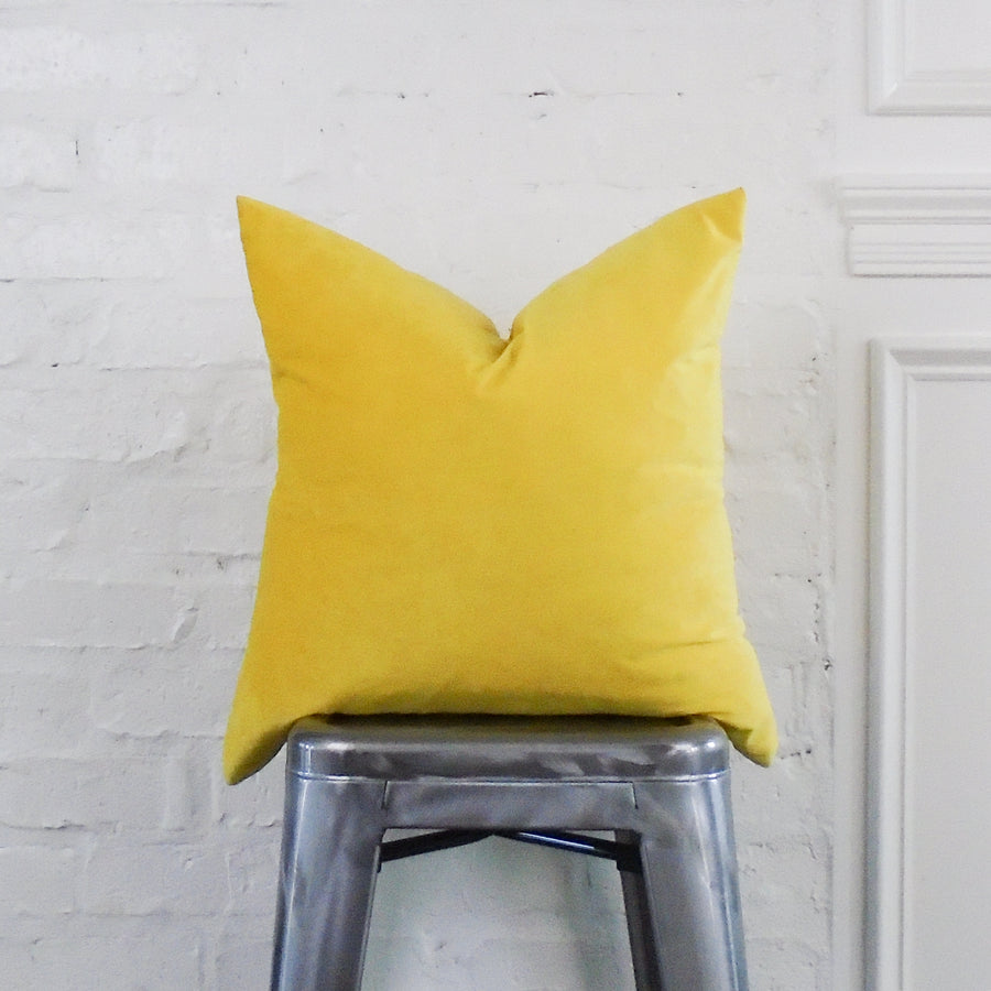 Illuminating Yellow Velvet