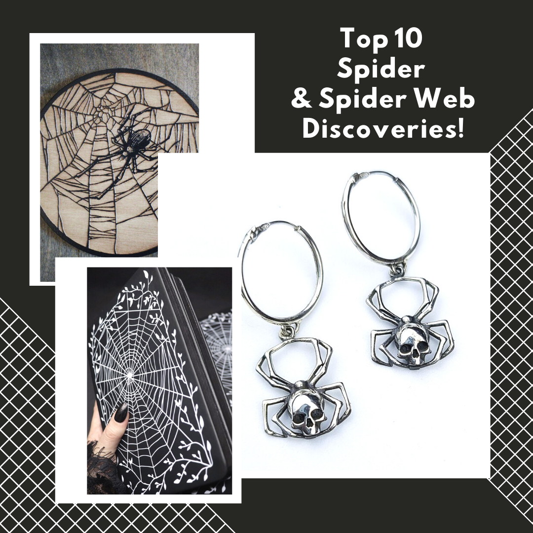 Top 10 Spider & Spider Web Discoveries!