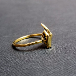 14k Yellow Gold F**K You Ring Middle FInger - Inchoo Bijoux