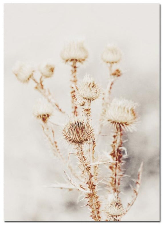 Thistles - HAYA Home Decor