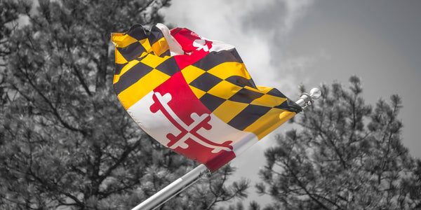Fine Maryland photography print of the Maryland flag flying at Mount Rushmore National Memorial.