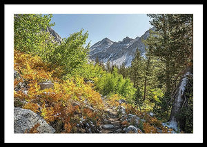 Framed fine photographic print of a multicolored autumn landscape hiking through the forested mountains of the Pacific Crest Trail.