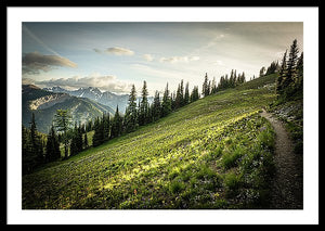 Framed fine photographic and art print of an evening walk along the sunkissed Washington Section of the Pacific Crest Trail north of Hart's Pass.