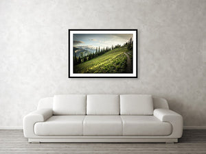 Framed fine photographic and wall art print of an evening walk along the sunkissed Washington Section of the Pacific Crest Trail north of Hart's Pass.