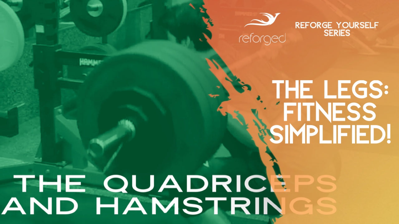 The Quadriceps and Hamstrings: Fitness Simplified