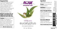 Load image into Gallery viewer, Now Foods, Essentials Oils, Eucalyptus Oil