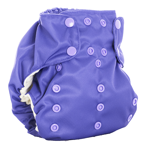Smart Bottoms Dream Diaper 2.0 - Concord