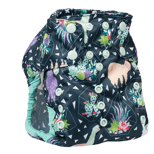 Smart Bottoms Too Smart 2.0 Diaper Cover - Tina