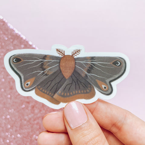 Autumn Harvest Moth - Vinyl Sticker