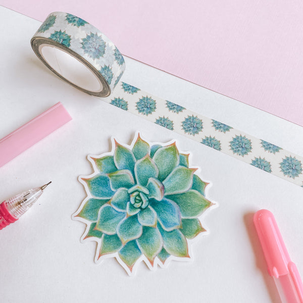 Succulents - Washi Tape