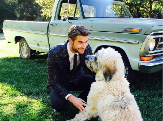 11 Cutest Dogs with Celebrity Pawrents