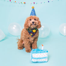 Load image into Gallery viewer, Birthday Cake Dog Toy - Blue