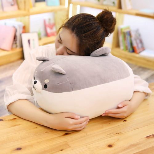Cute Angry Shiba Inu Dog Plush Corgi Chai Pillow - Best Kawaii Shop