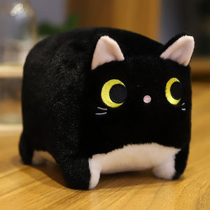 Cute Chubby Square Cat - Kawaii Kitten Plush - Best Kawaii Shop