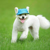 Pet Dog Summer Hat