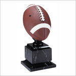 "Football 14"" trophy - Pro series"