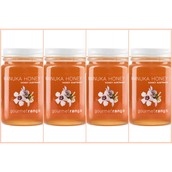 Manuka Honey Australia Gift Pack 4 x 170g