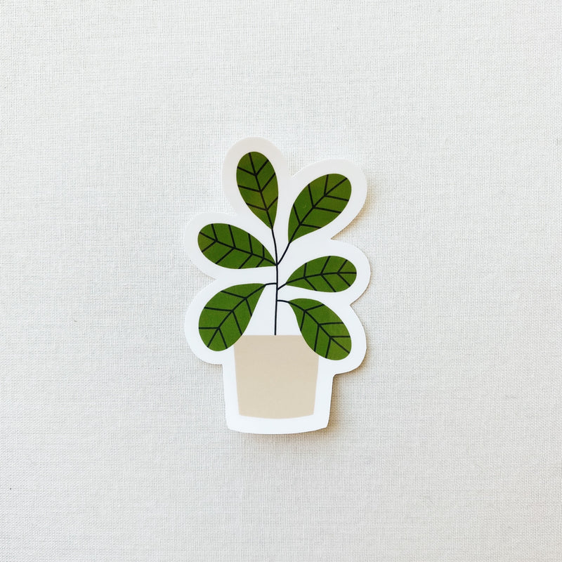 Fiddle Fig Plant Sticker