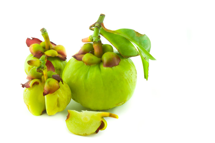 Ingredient Spotlight: Garcinia Cambogia