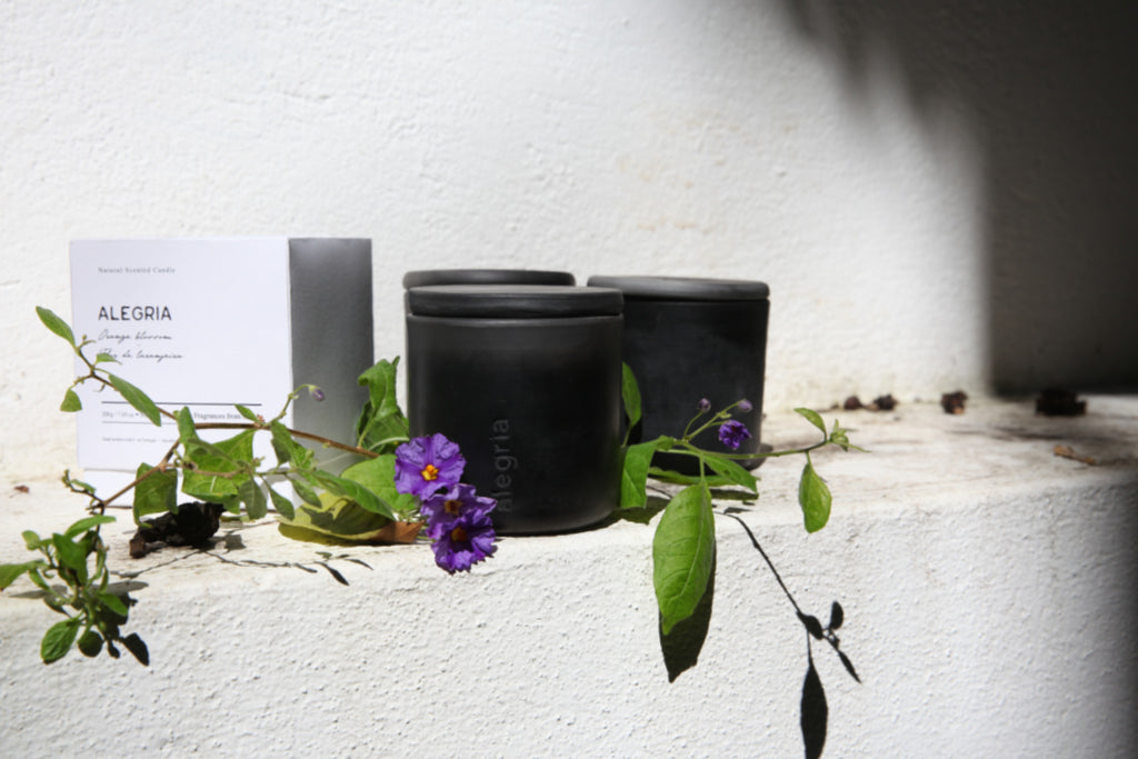 Barro Negro candle collection Luz Editions