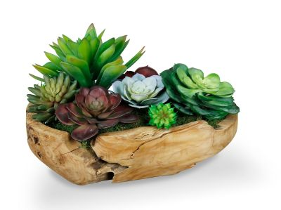 Succulent Bowl Table Top Decor