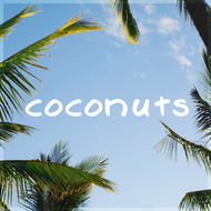 'MBB - Coconuts' Licence
