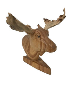 Moose head with Burlwood antlers