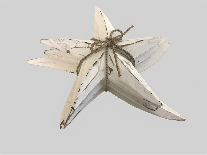 starfish - SET OF 3 - whitewash