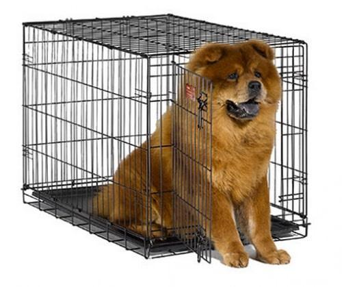 Midwest iCrate Single Door Folding Dog Crate