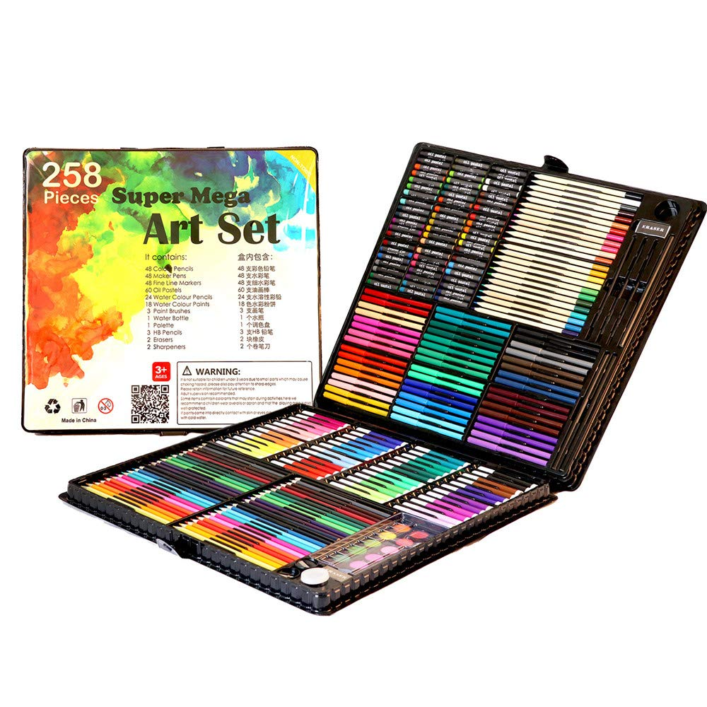 258 Piece Childrens Art Set Carry Case | Monthly Madness