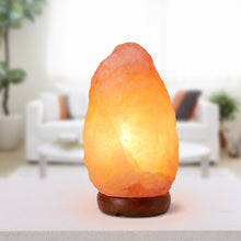 Load image into Gallery viewer, Lumina Natural Himalayan Salt Rock Lamp | Monthly Madness