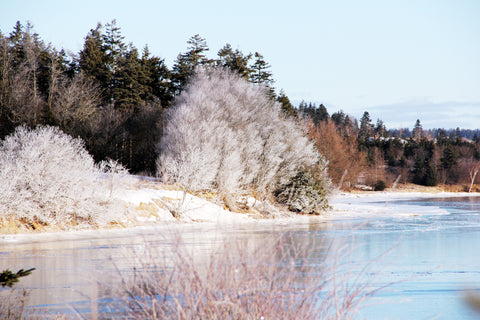 Prince Edward Island Winter
