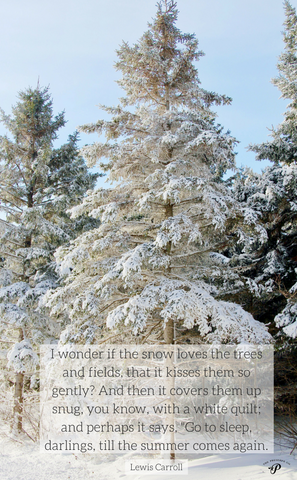 Prince Edward Island Winter quote