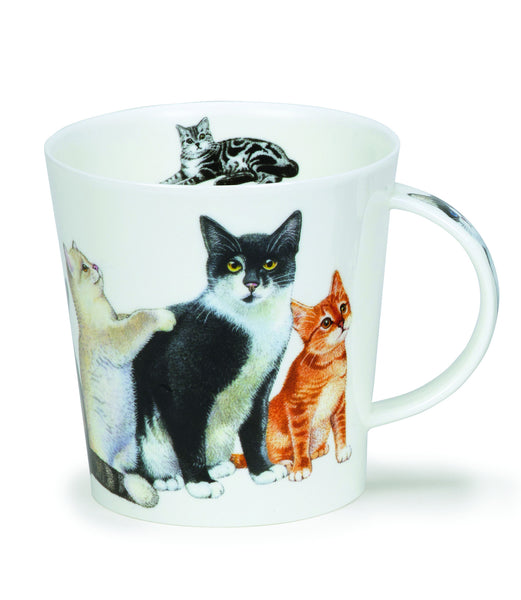 Cairngorm, Cats and Kittens, Black by Dunoon