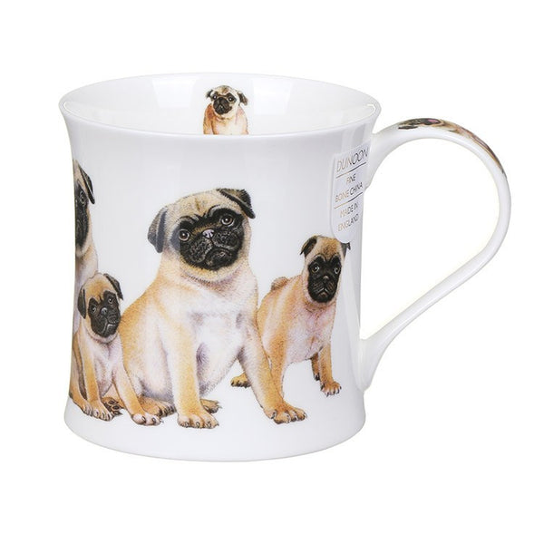 Wessex, Designer Dogs, Pugs by Dunoon