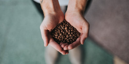 Celebrating National Coffee Day: A History of the Bean