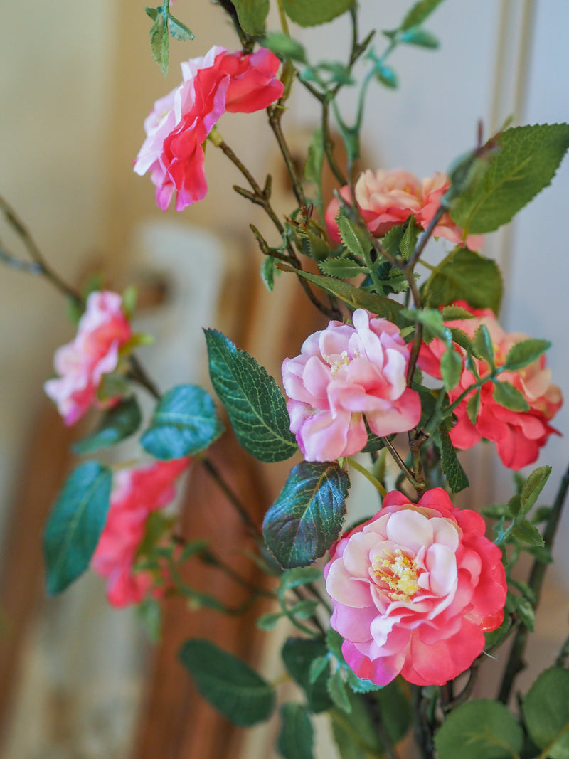 Wild country hedgerow roses ( with tall vase)