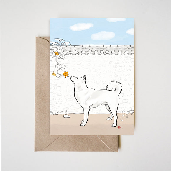 Jindo Gae Kiwa Greeting Card