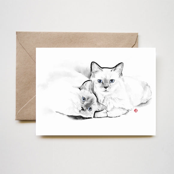 Purrfect Cats Greeting Card