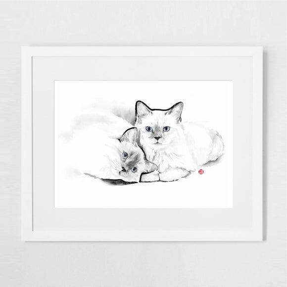 Purrfect Cats Art Print Poster