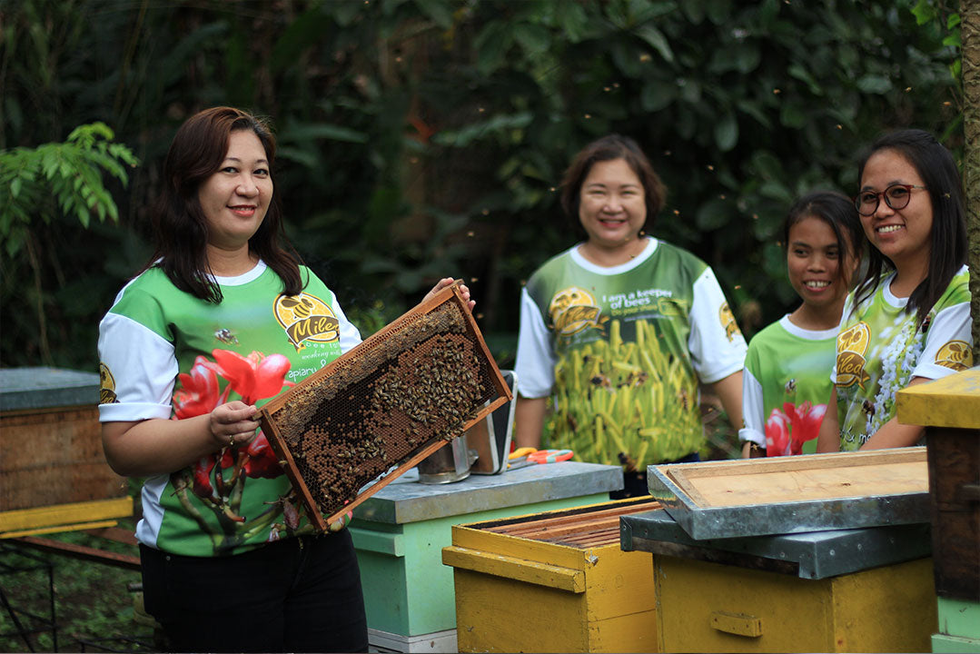 Basic Stingless Beekeeping Workshop (May)
