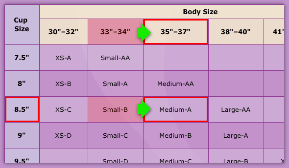 Sport Size Chart Infographic