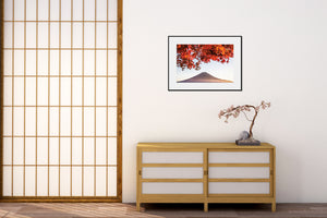 Load image into Gallery viewer, Red Fuji