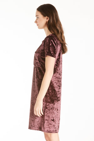 Another Love Alex Velvet Dress (Plum)