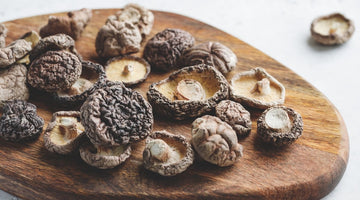 Medicinal mushrooms are nature's best kept detox secret