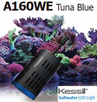 Kessil A160WE Tuna Blue